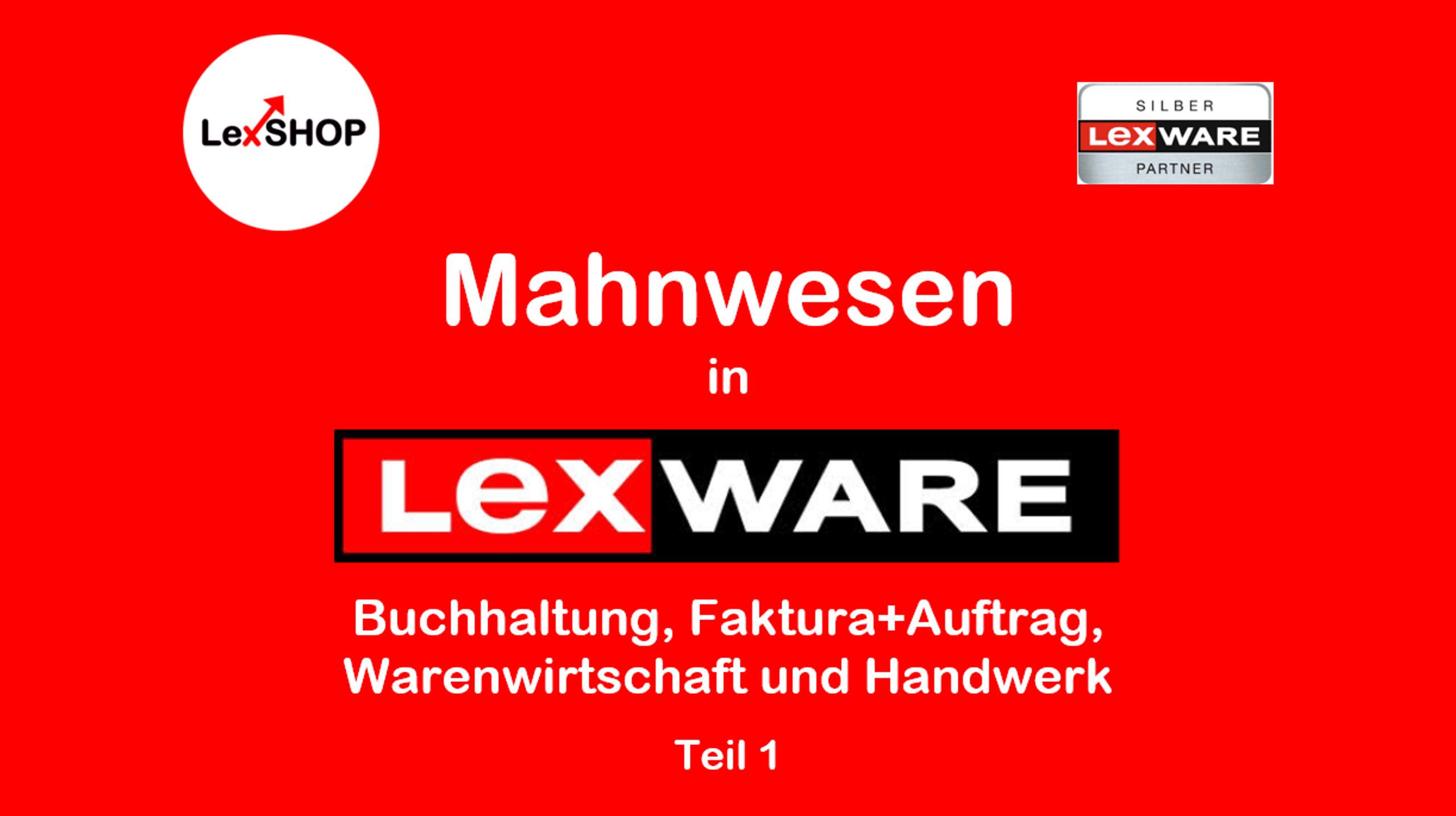Wie kann ich die schlimmsten 5 Fehler im Mahnwesen von Lexware Buchhaltung oder Warenwirtschaft und Handwerk vermeiden?